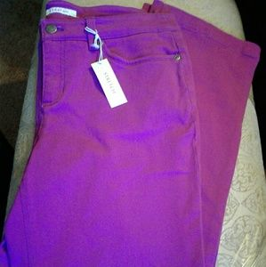 Jones New York Pant